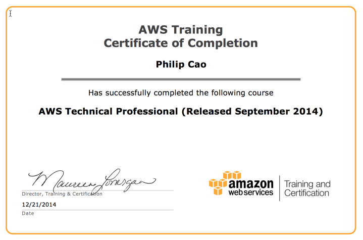 AWS Technical Professional