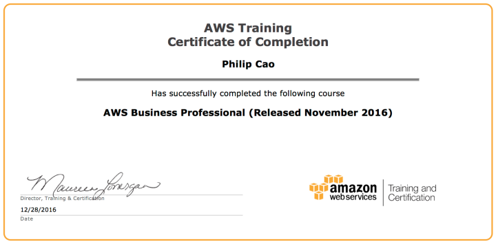 AWS Business Professional (Released November 2016) – Certificate of Completion